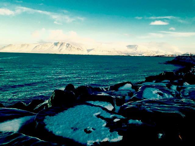View From Reykjavik Bay