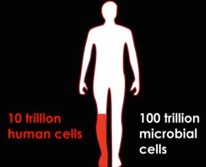 Human Cells vs. Microbial Cells